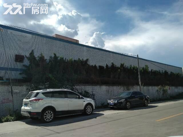 镇隆独院单层钢构厂房4000平方出租-图(1)