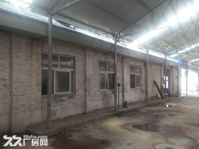 独院出租,适合办公、仓库-图(4)