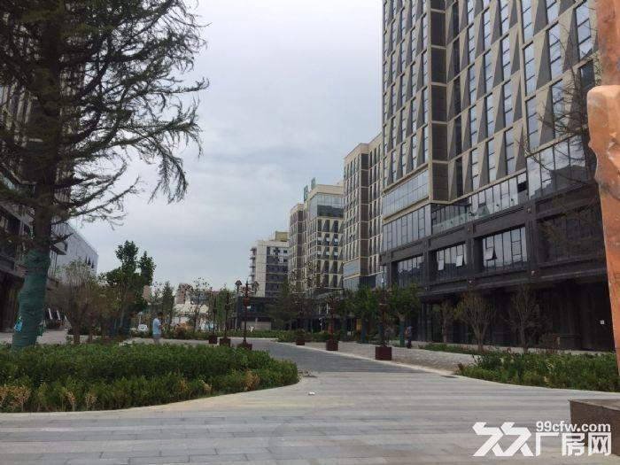 草滩高标准产业楼可租可售-图(3)