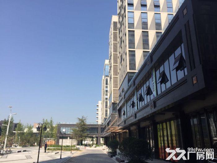 草滩高标准产业楼可租可售-图(5)