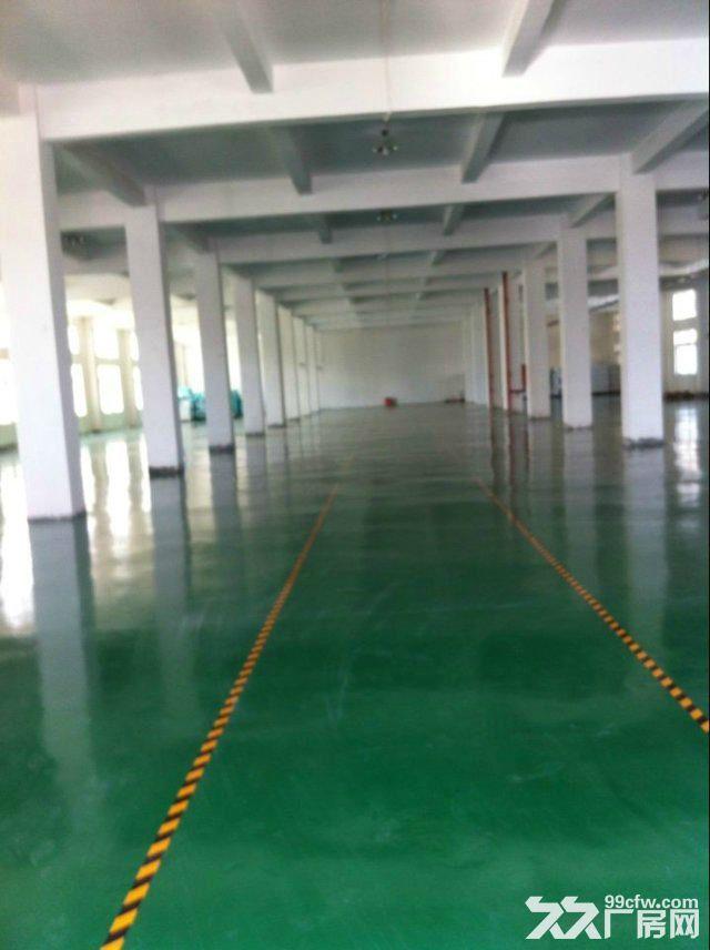 上海小仓库,零售业、批发业、日用百货类专用仓库出租-图(5)