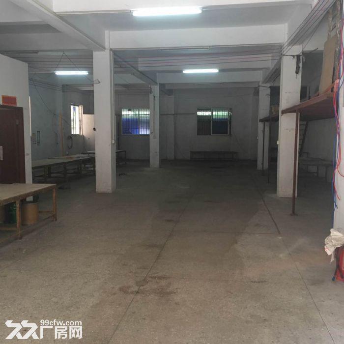 首层350平方米厂房出租-图(1)
