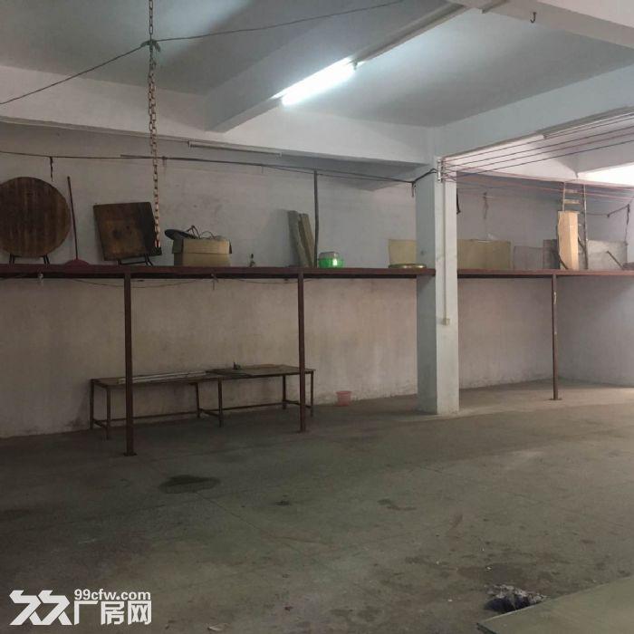 首层350平方米厂房出租-图(5)