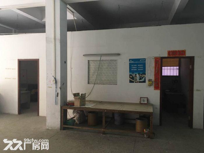 首层350平方米厂房出租-图(6)