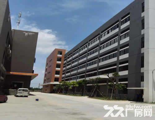 高明各种规格的厂房出租(1000平方米起租)-图(2)