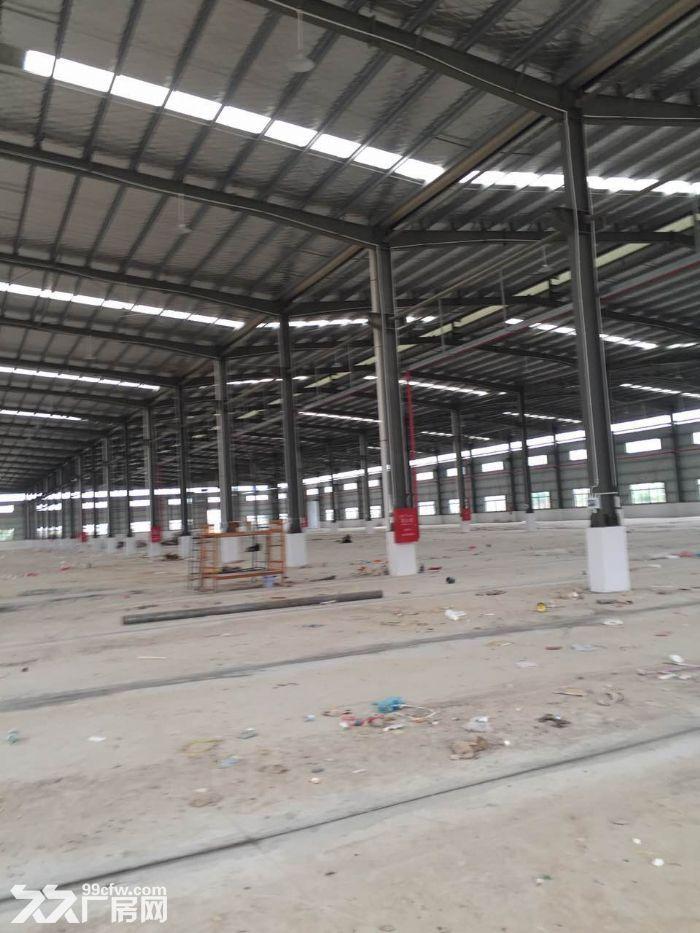 50000标准钢12米高结构厂房。可分租-图(2)