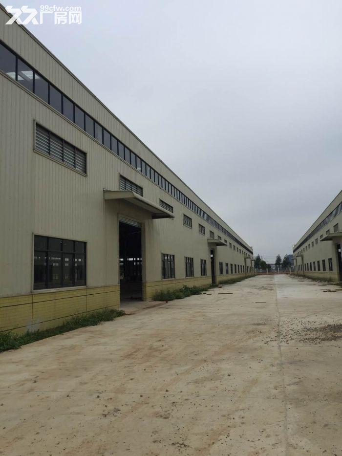 50000标准钢12米高结构厂房。可分租-图(3)