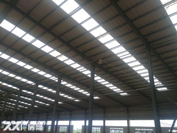 50000标准钢12米高结构厂房。可分租-图(4)