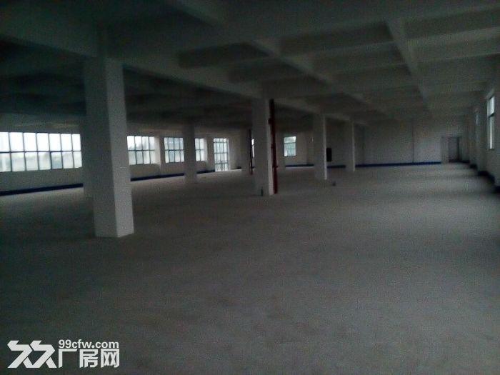 14000方楼层厂房,每层7000方,宿舍办公齐全。-图(1)