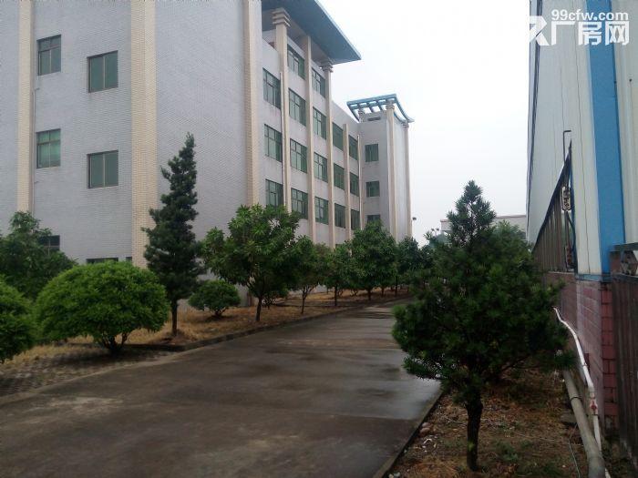 14000方楼层厂房,每层7000方,宿舍办公齐全。-图(3)