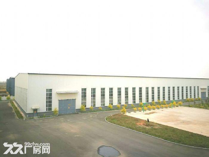 手续齐全的高标准厂房出租-图(5)