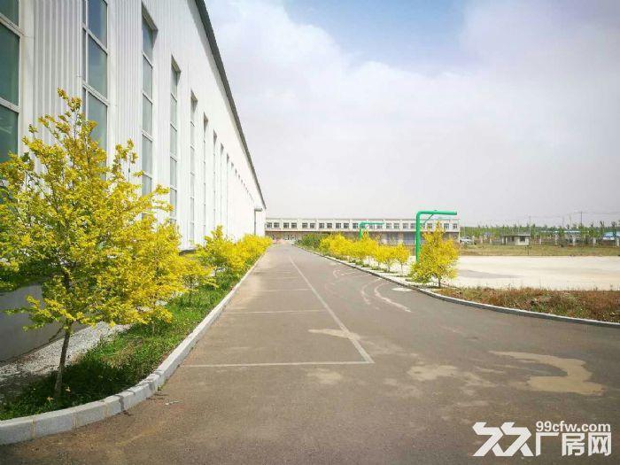 手续齐全的高标准厂房出租-图(7)