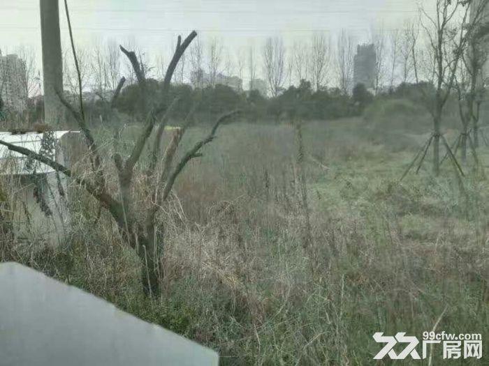 梅村20亩国有土地出售-图(1)