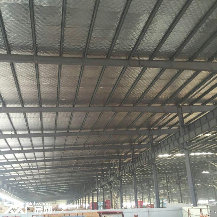 厂房3万平米及空地60亩-图(5)