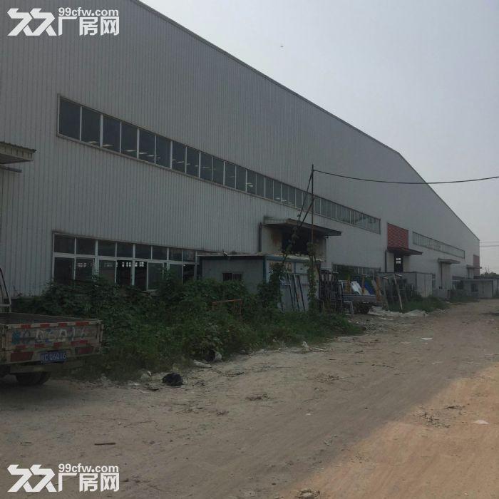厂房3万平米及空地60亩-图(6)