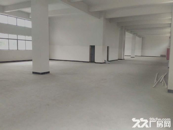 睦洲新沙3000方厂房招租(可做小污染行业)-图(3)
