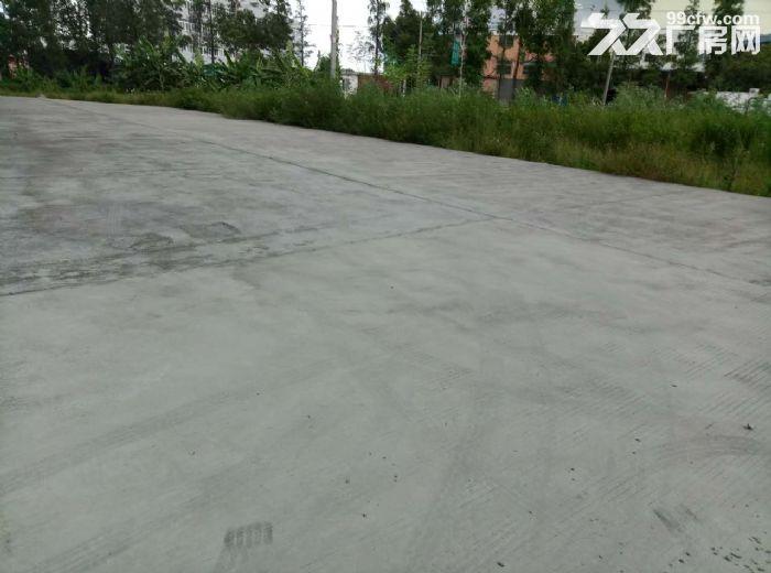 睦洲新沙3000方厂房招租(可做小污染行业)-图(4)