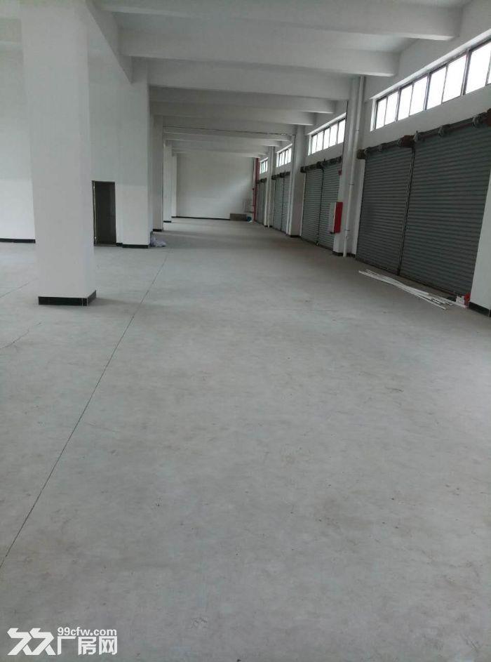 新沙1000方标准厂房招租(可做小污染行业)-图(2)