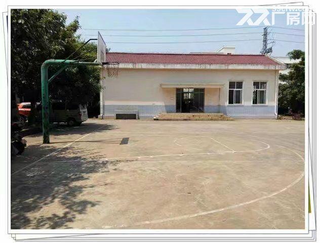 新兴工业园厂房出租可做仓库,价格优惠面议-图(3)