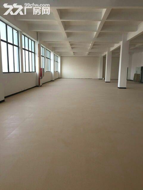 个人出租莘庄工业区新空出1500平米办公展厅-图(2)
