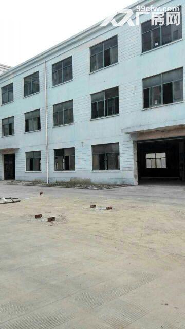 个人出租莘庄工业区新空出1500平米办公展厅-图(3)