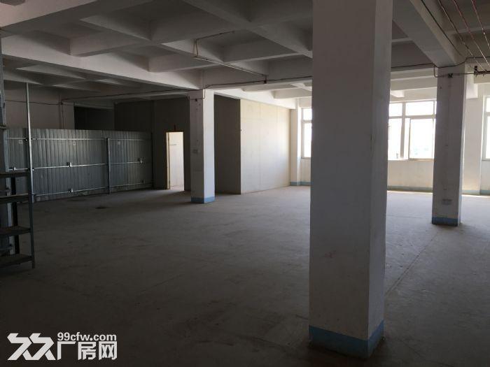 分租400平方厂房分租,第五层,有3T电梯。-图(2)