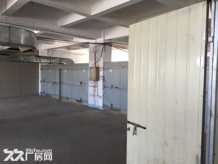 分租400平方厂房分租,第五层,有3T电梯。-图(4)