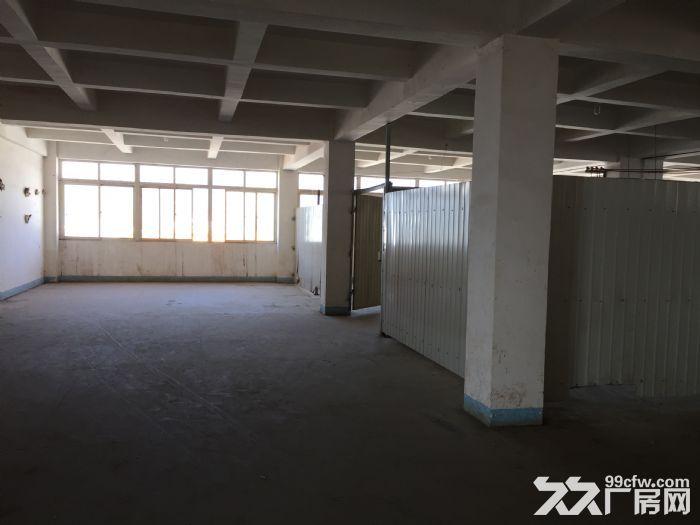 分租400平方厂房分租,第五层,有3T电梯。-图(5)