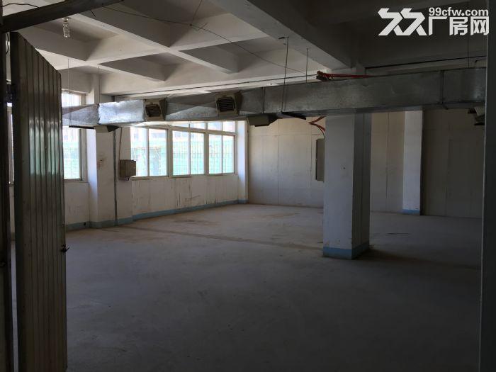 分租400平方厂房分租,第五层,有3T电梯。-图(7)