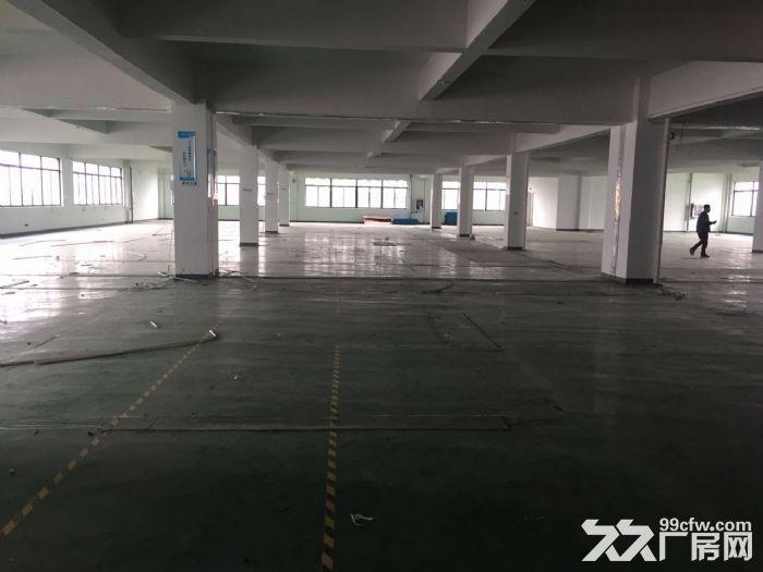 1500方厂房出租适合淘宝科技仓储办公等-图(1)