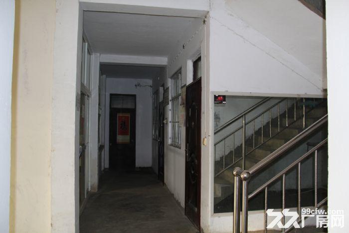 高新区600平厂房有天车-图(3)