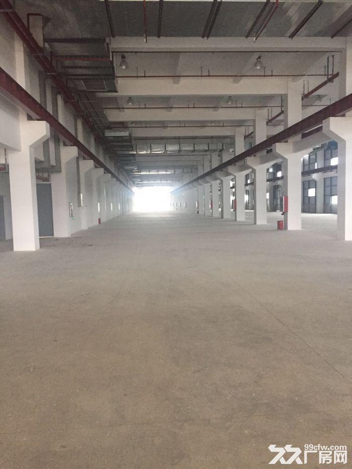 新吴区鸿山丙类独门独院仓储和大场地-图(2)