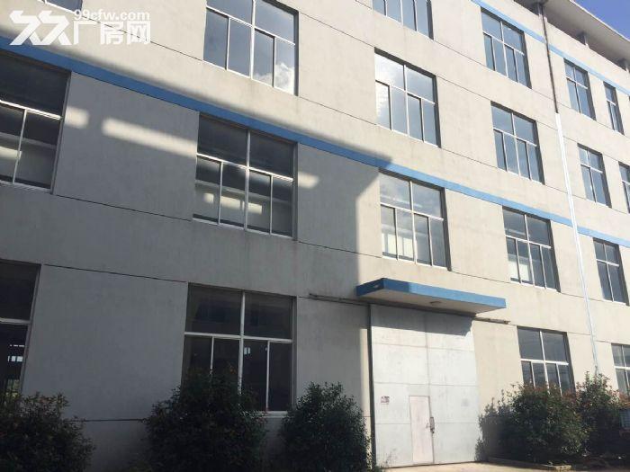 新区梅村10000平米三层独栋厂房整体出租-图(3)