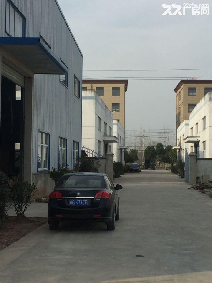 安徽枞阳现有一栋全新五层楼厂房出租-图(2)