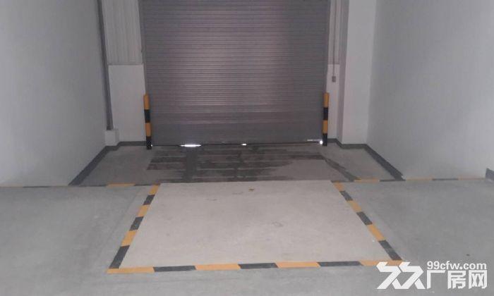 空港6300平米高标准厂房对外出租!-图(2)