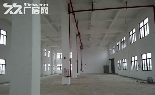 金湾1−5楼标准厂房、钢构厂房招租7元/㎡起租-图(1)