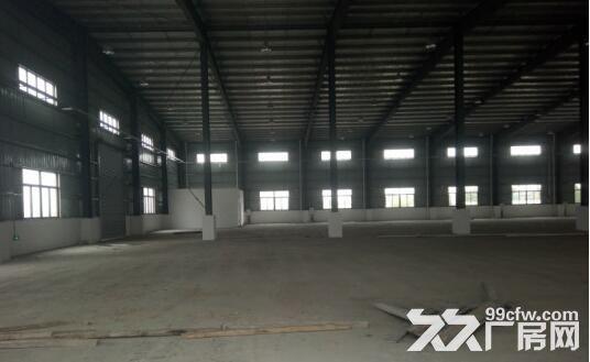 金湾1−5楼标准厂房、钢构厂房招租7元/㎡起租-图(2)