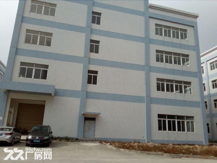 金湾1−5楼标准厂房、钢构厂房招租7元/㎡起租-图(3)