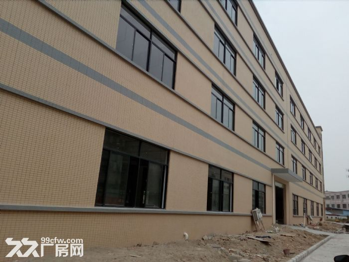 金湾1−5楼标准厂房、钢构厂房招租7元/㎡起租-图(4)