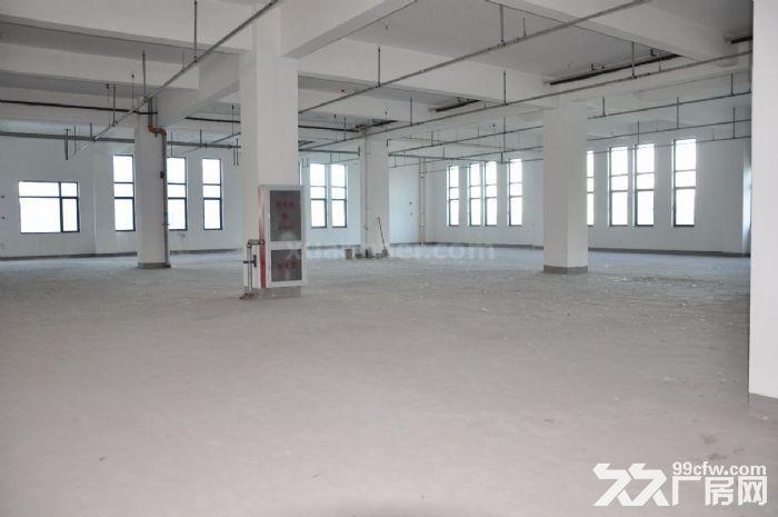 东丽华明开发区15000平米厂房出租,正规园区!-图(2)