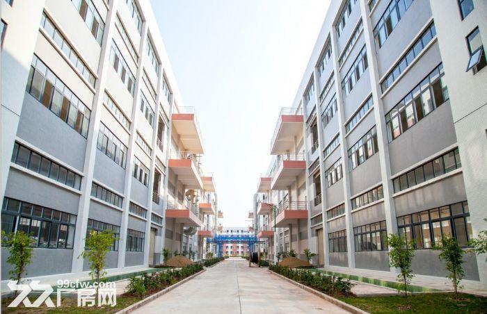 罗定市双东环保工业园电镀厂房出租-图(2)
