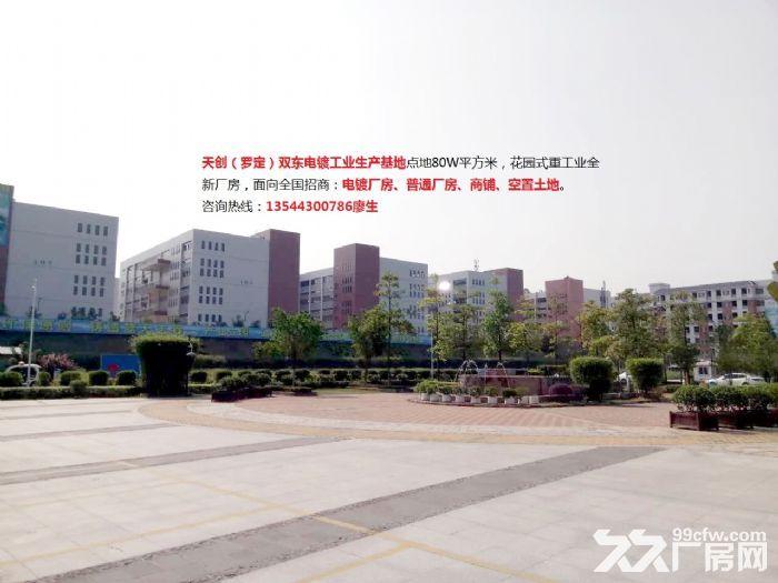 罗定市双东环保工业园电镀厂房出租-图(6)
