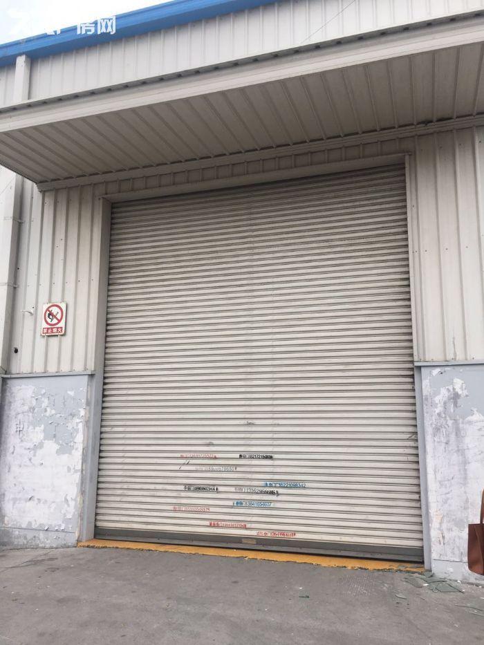 证件齐全周浦万单层厂房仓库1400平出租,高7米-图(3)