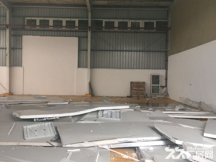 证件齐全周浦万单层厂房仓库1400平出租,高7米-图(4)
