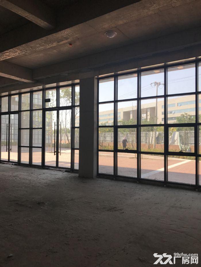 西青区赛达大道优质房源−−−写字楼,厂房出售-图(2)