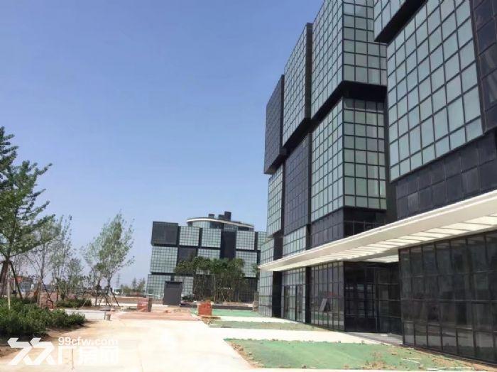 西青区赛达大道优质房源−−−写字楼,厂房出售-图(4)