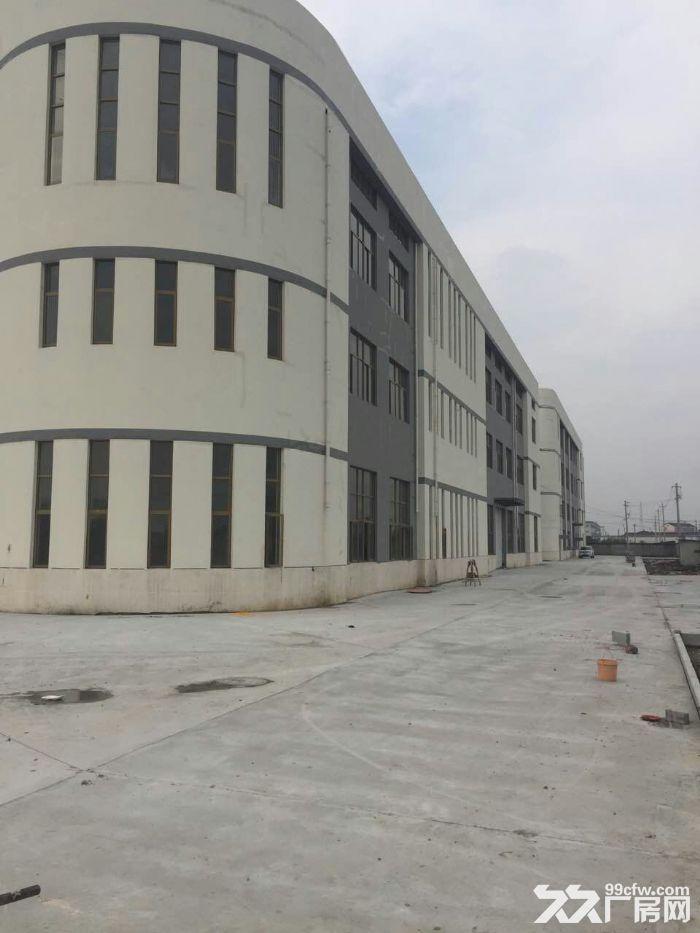 钟楼区西林紧靠高架旁8000平方标准厂房出租-图(1)