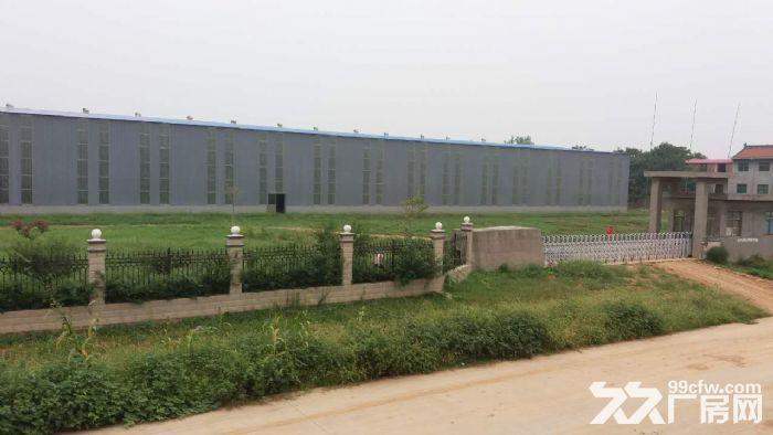 全新钢构厂房优惠出租-图(8)