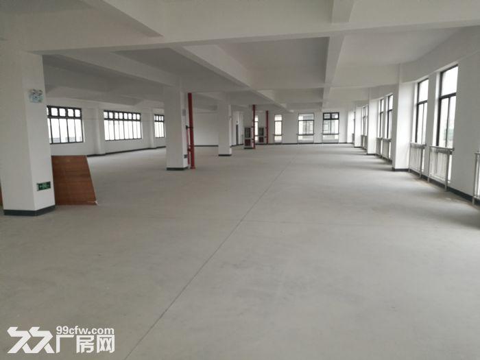 新建独栋多层办工研发基地中外资优质企业福地800起租-图(2)