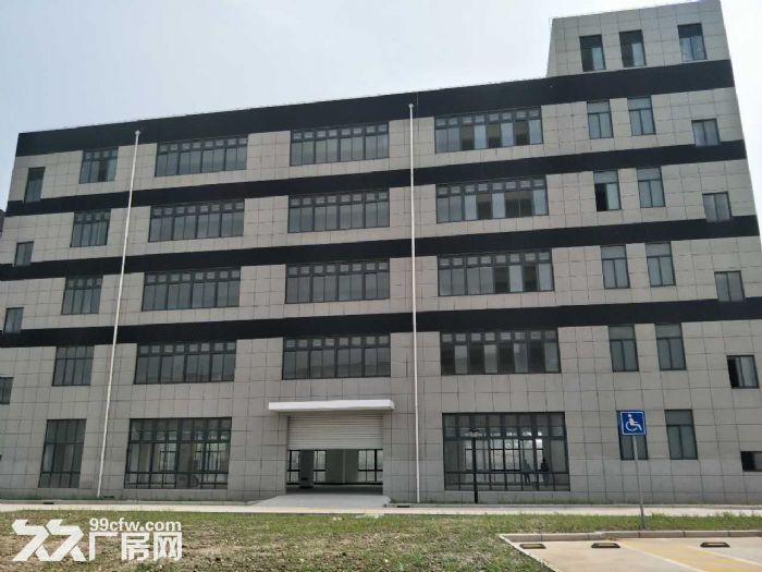 新建独栋多层办工研发基地中外资优质企业福地800起租-图(4)